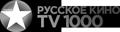 viasat_ruskino